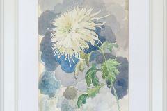 Хризантема 30x40 см., бумага,акварель, 2005