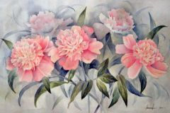 Розовые пионы 30x40 см., бумага,акварель, 2001.